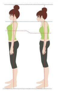 女性の姿勢