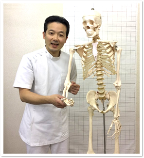 人体模型と先生