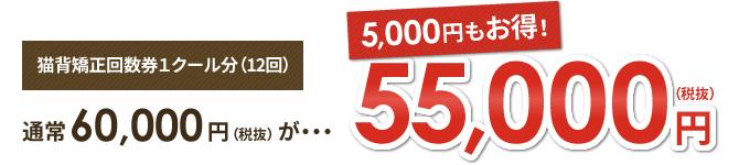 猫背矯正回数券1クール分(12回)が55,000円(税抜)【5,000円もお得!】